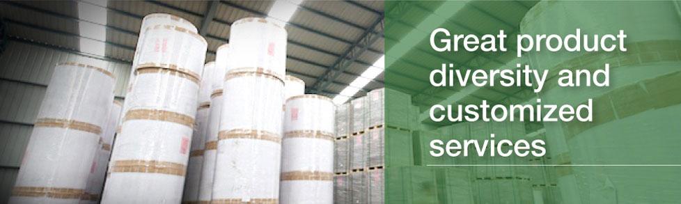 Samson Paper Holdings Limited